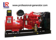 ISO9001 250KVA Natural Gas Electricity Generator with AC Three Phase Doosan Engine