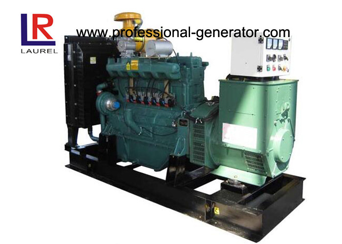 CE 80kVA Natural Gas Generators With CHP System / Brushless Running Cost Lower